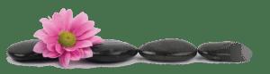 Pohaku Wela Healing Stones